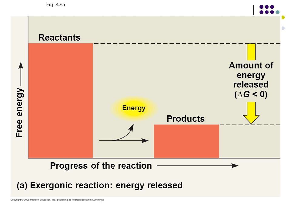 Amount of energy released (∆G < 0)