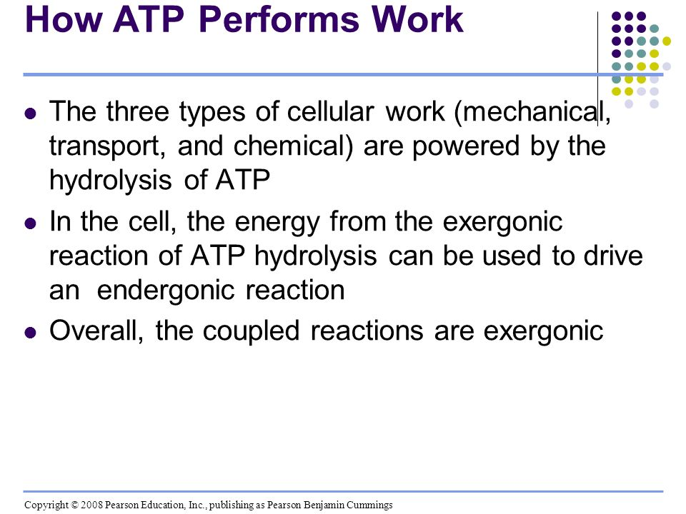 How ATP Performs Work The three types of cellular work (mechanical, transport, and chemical) are powered by the hydrolysis of ATP.