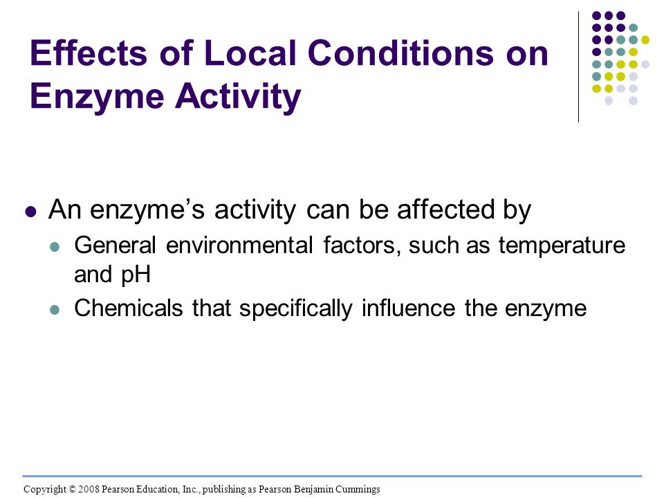 Effects of Local Conditions on Enzyme Activity