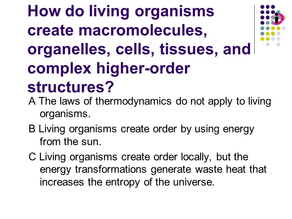 Living Organisms and Order How do living organisms create macromolecules, organelles, cells, tissues, and complex higher-order structures