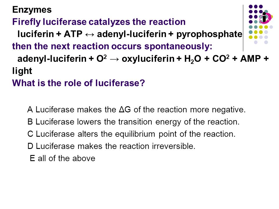 Enzymes Firefly luciferase catalyzes the reaction luciferin + ATP ↔ adenyl-luciferin + pyrophosphate then the next reaction occurs spontaneously: adenyl-luciferin + O2 → oxyluciferin + H2O + CO2 + AMP + light What is the role of luciferase