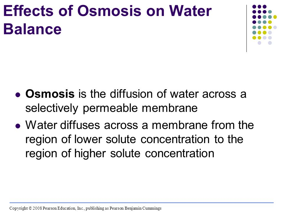 Effects of Osmosis on Water Balance