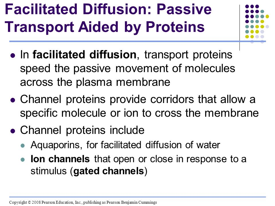Facilitated Diffusion: Passive Transport Aided by Proteins