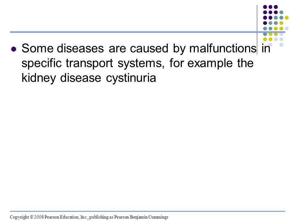 Some diseases are caused by malfunctions in specific transport systems, for example the kidney disease cystinuria