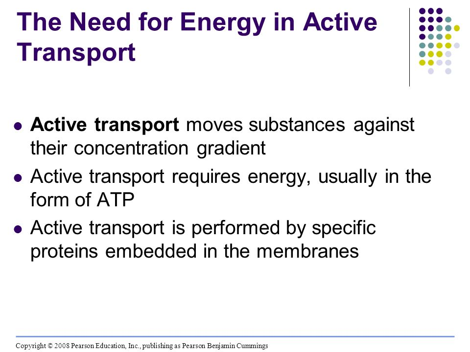 The Need for Energy in Active Transport