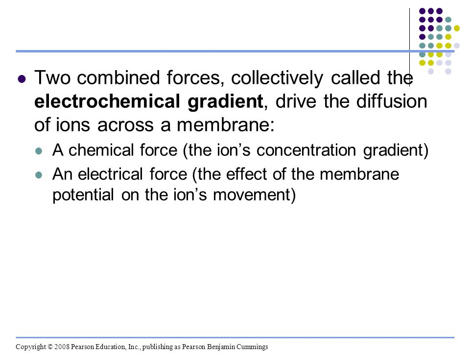 Two combined forces, collectively called the electrochemical gradient, drive the diffusion of ions across a membrane:
