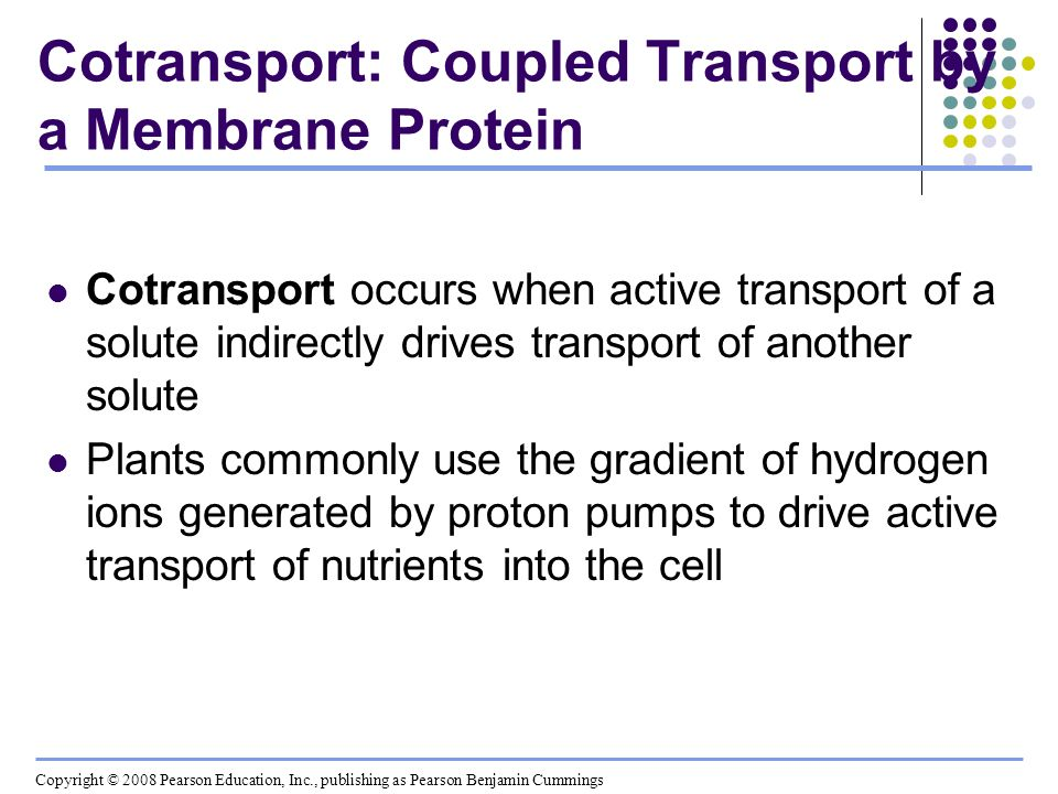 Cotransport: Coupled Transport by a Membrane Protein