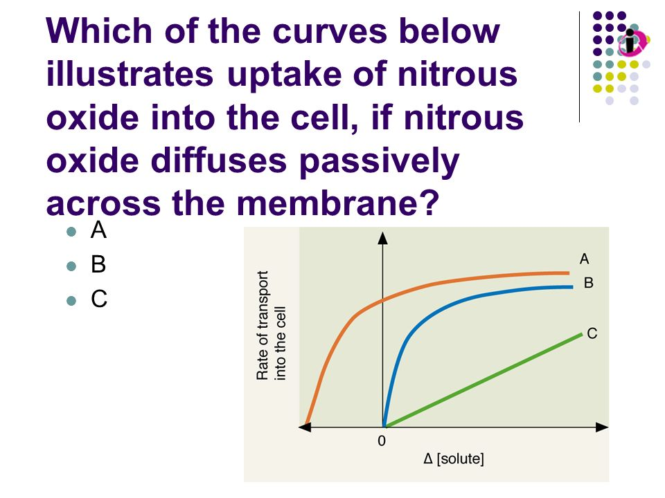 Transport Kinetics: Passive Diffusion Which of the curves below illustrates uptake of nitrous oxide into the cell, if nitrous oxide diffuses passively across the membrane