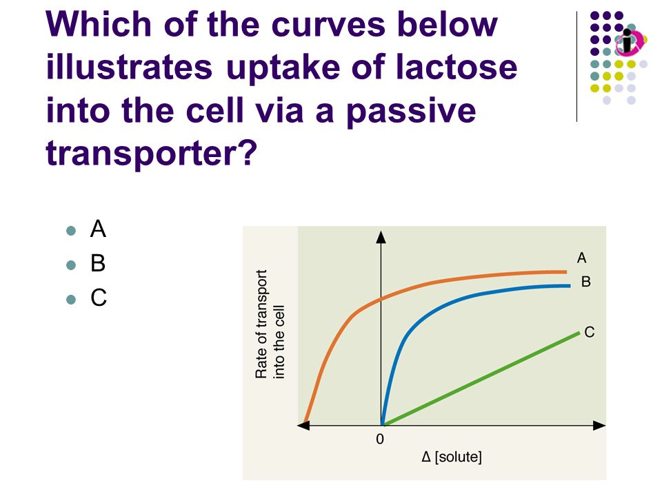Transport Kinetics: Passive Diffusion Which of the curves below illustrates uptake of lactose into the cell via a passive transporter