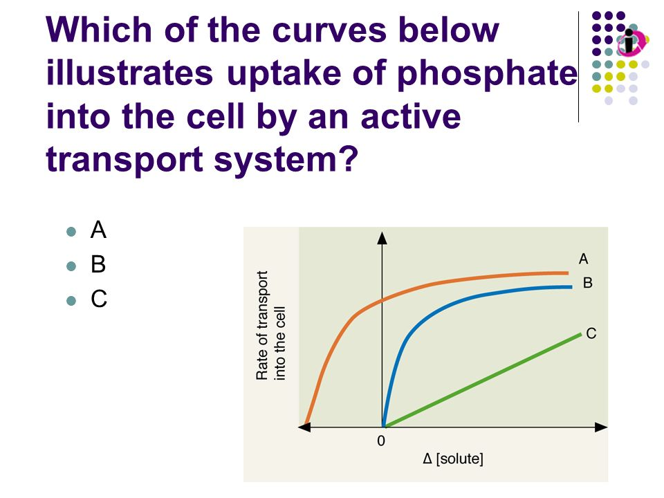 Transport Kinetics: Passive Diffusion Which of the curves below illustrates uptake of phosphate into the cell by an active transport system
