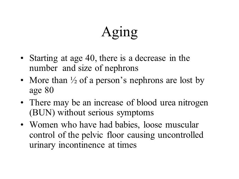 Aging Starting at age 40, there is a decrease in the number and size of nephrons. More than ½ of a person's nephrons are lost by age 80.