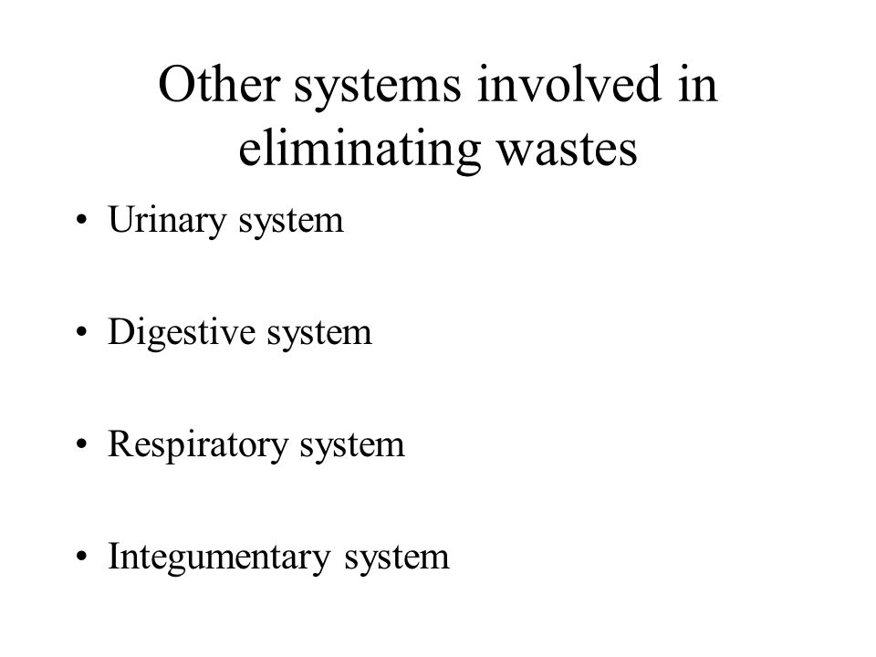 Other systems involved in eliminating wastes