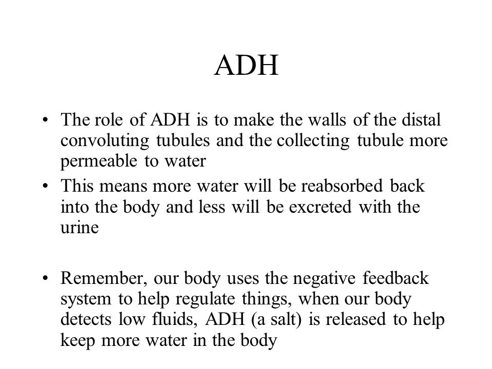 ADH The role of ADH is to make the walls of the distal convoluting tubules and the collecting tubule more permeable to water.