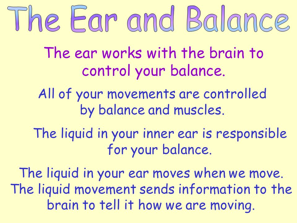 The ear works with the brain to control your balance.