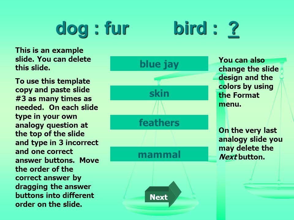 dog : fur bird : blue jay skin feathers mammal