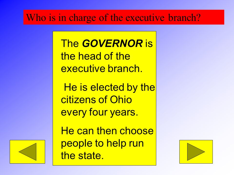 Who is in charge of the executive branch
