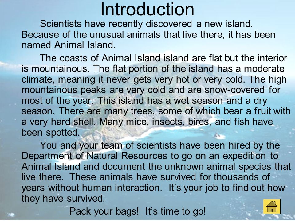 Introduction Scientists have recently discovered a new island. Because of the unusual animals that live there, it has been named Animal Island.