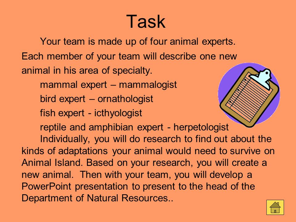 Task Your team is made up of four animal experts.