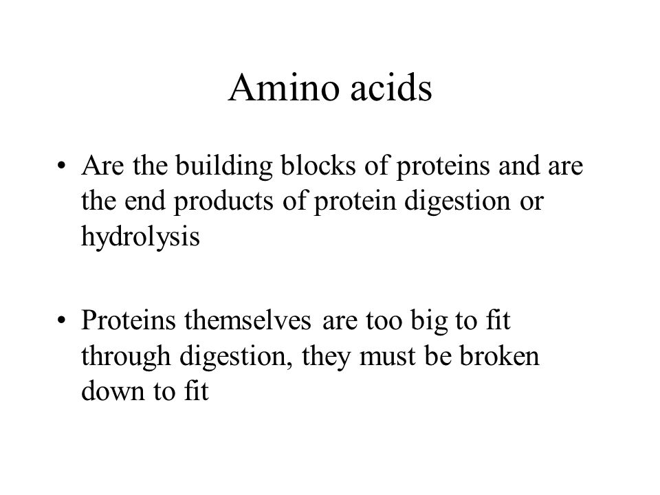 Amino acids Are the building blocks of proteins and are the end products of protein digestion or hydrolysis.