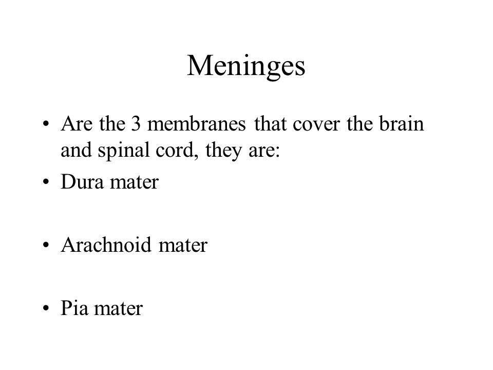 Meninges Are the 3 membranes that cover the brain and spinal cord, they are: Dura mater. Arachnoid mater.