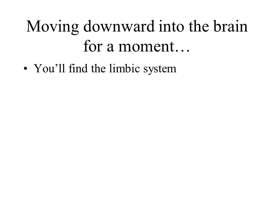 Moving downward into the brain for a moment…