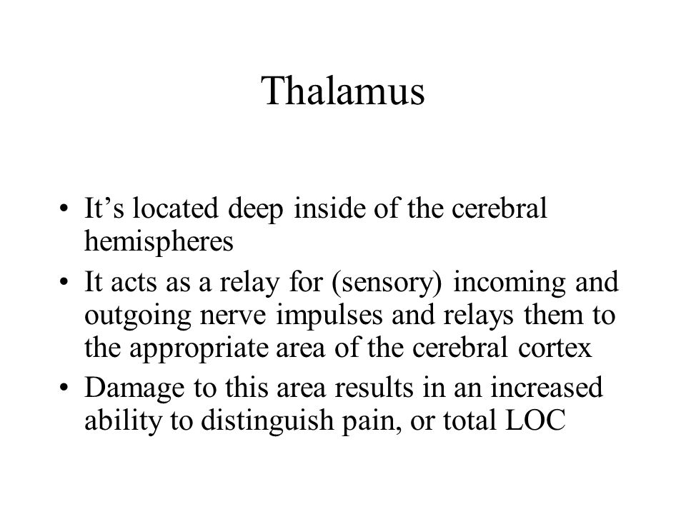 Thalamus It's located deep inside of the cerebral hemispheres