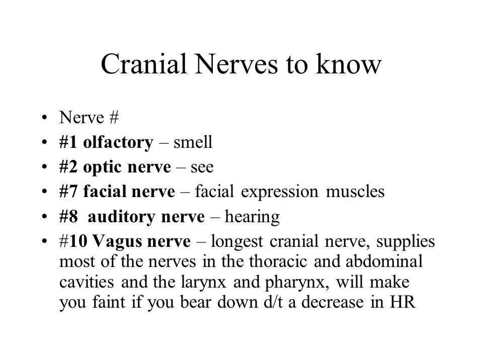 Cranial Nerves to know Nerve # #1 olfactory – smell