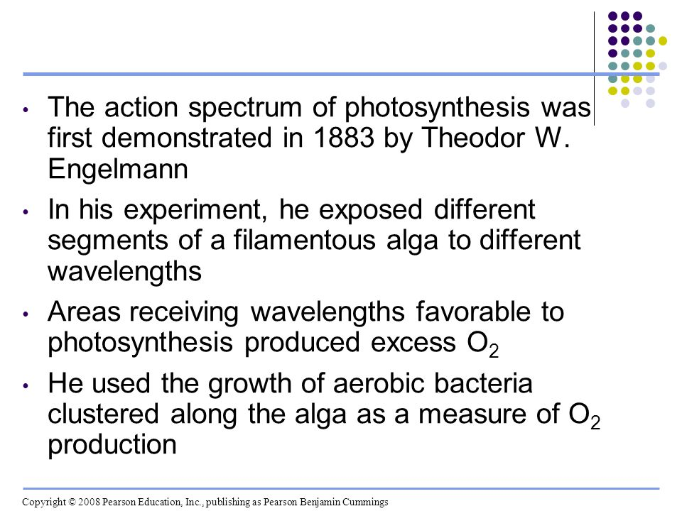 The action spectrum of photosynthesis was first demonstrated in 1883 by Theodor W. Engelmann