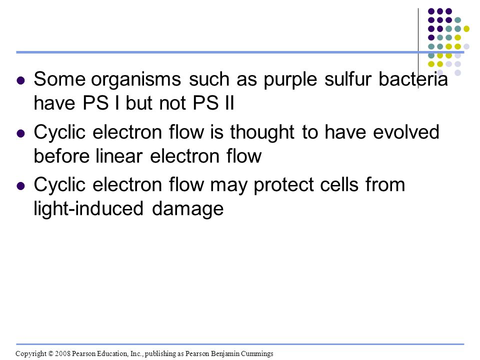 Some organisms such as purple sulfur bacteria have PS I but not PS II