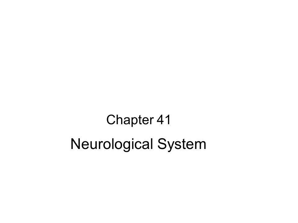 Chapter 41 Neurological System