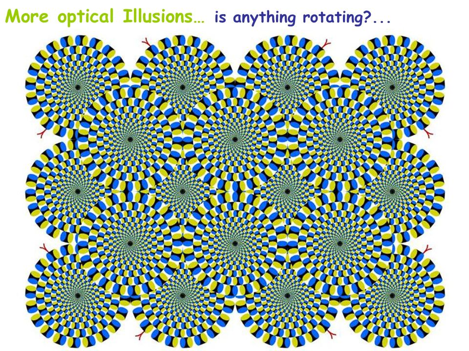 More optical Illusions… is anything rotating ...