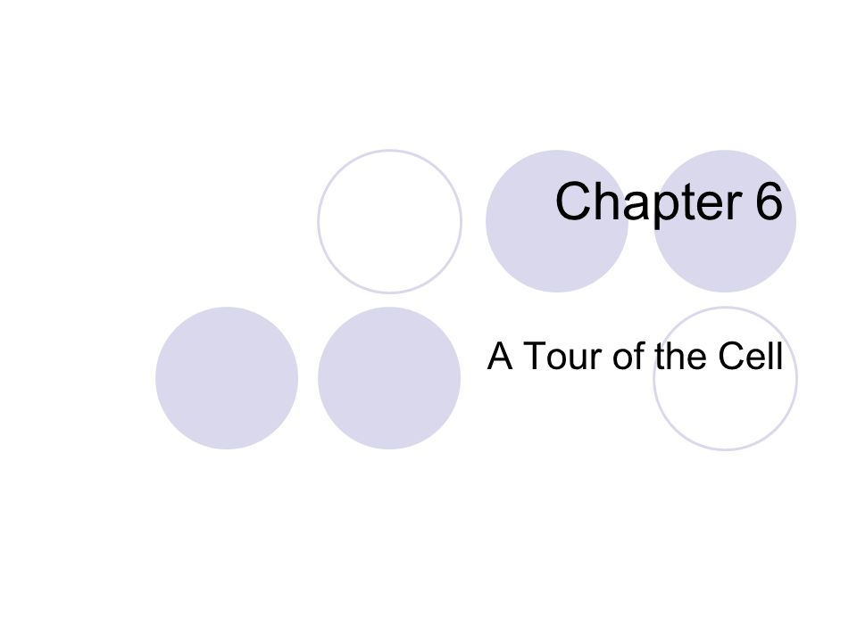 Chapter 6 A Tour of the Cell