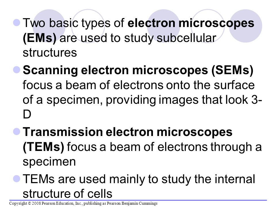 TEMs are used mainly to study the internal structure of cells