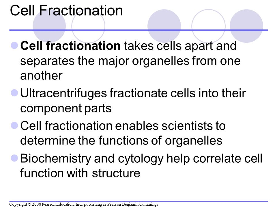 Cell Fractionation Cell fractionation takes cells apart and separates the major organelles from one another.