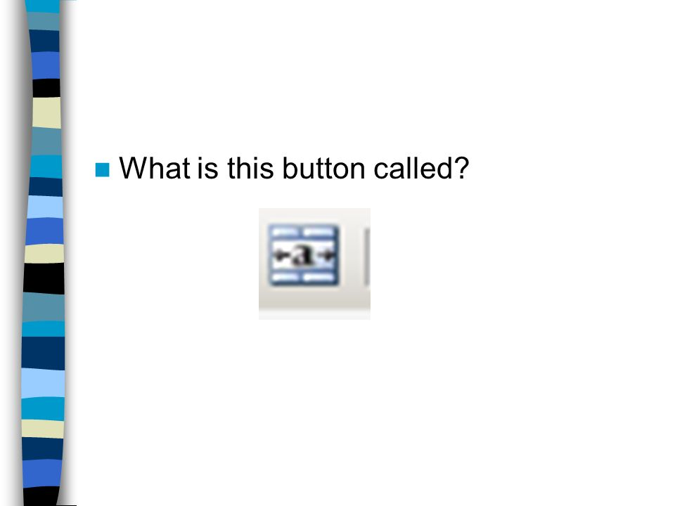 What is this button called