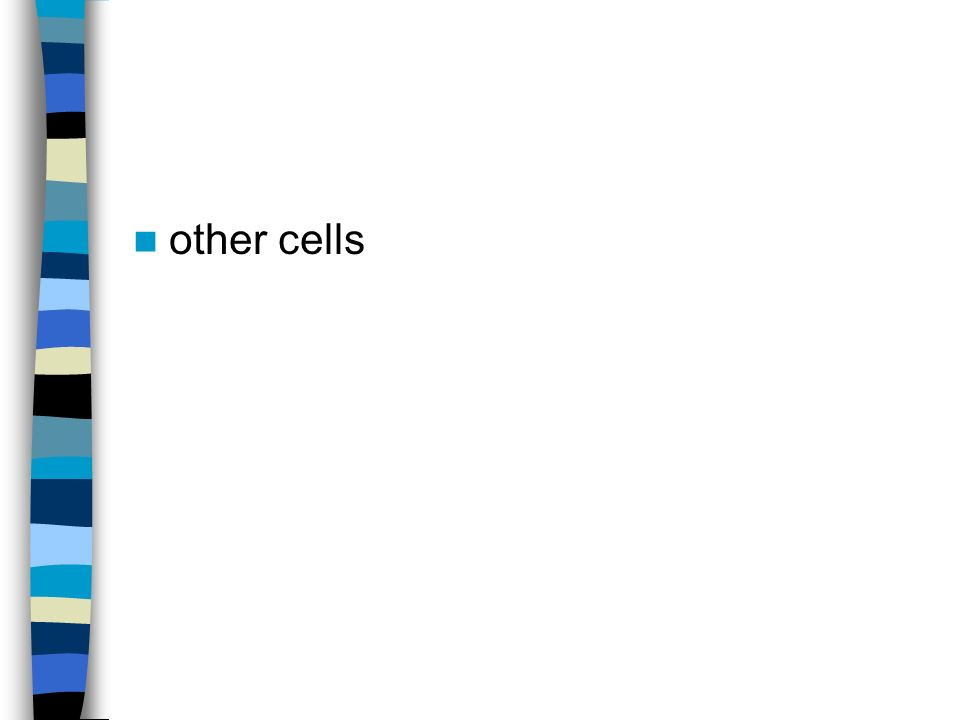 other cells