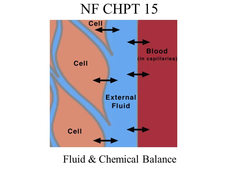 Fluid & Chemical Balance