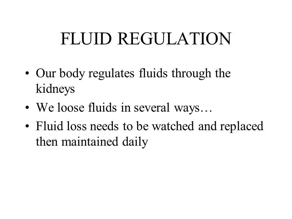 FLUID REGULATION Our body regulates fluids through the kidneys