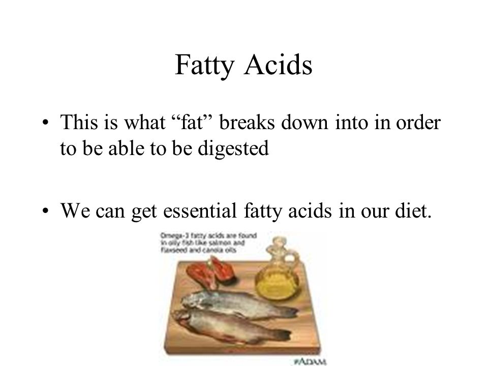 Fatty Acids This is what fat breaks down into in order to be able to be digested.
