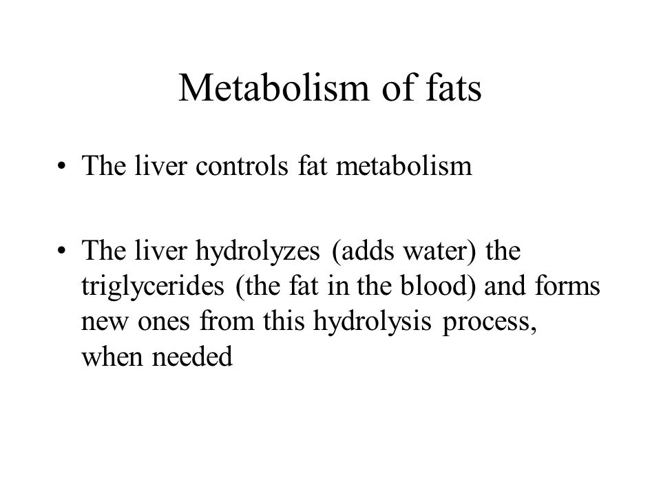 Metabolism of fats The liver controls fat metabolism