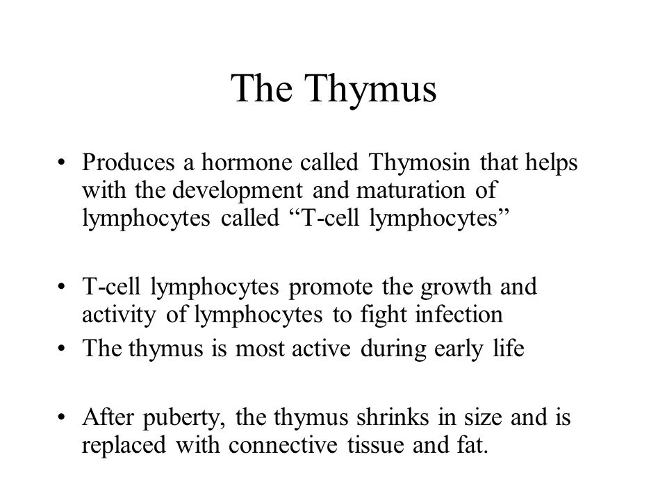 The Thymus Produces a hormone called Thymosin that helps with the development and maturation of lymphocytes called T-cell lymphocytes