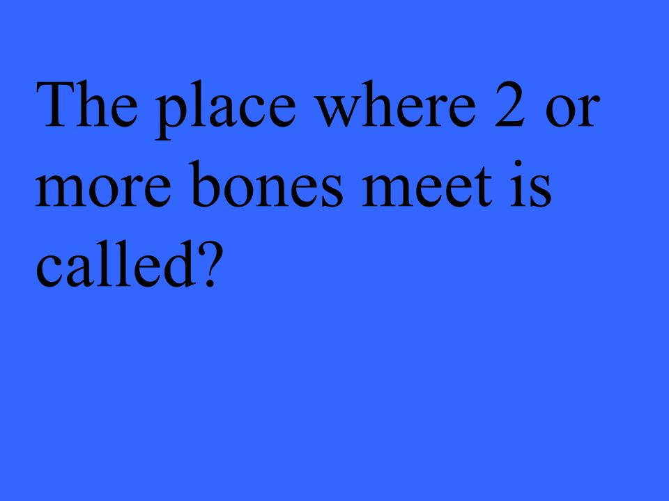 The place where 2 or more bones meet is called