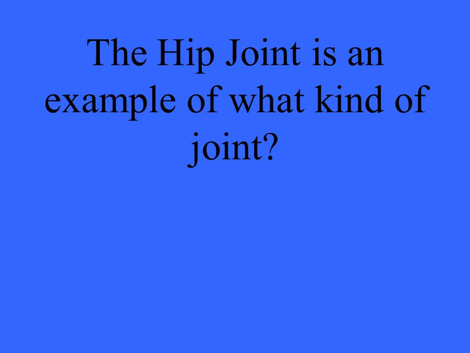 The Hip Joint is an example of what kind of joint