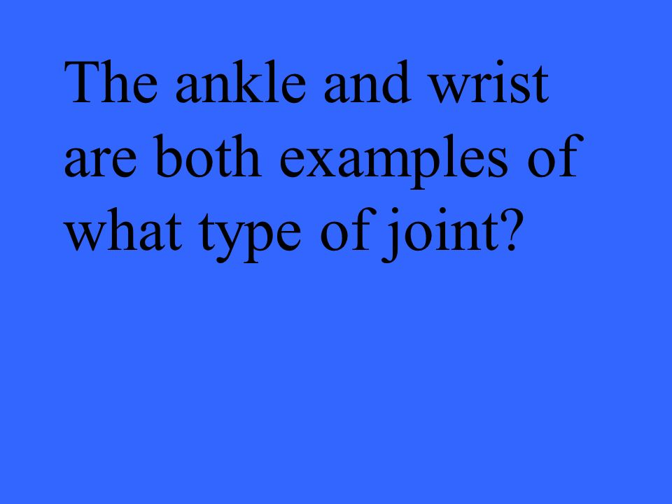 The ankle and wrist are both examples of what type of joint