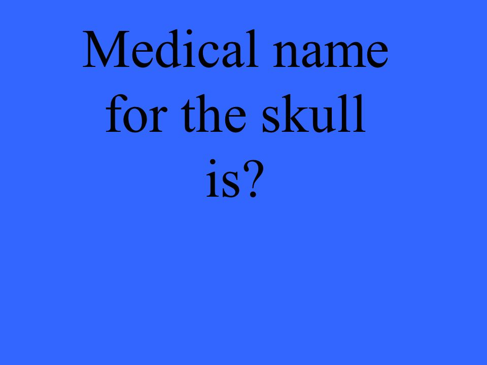 Medical name for the skull is