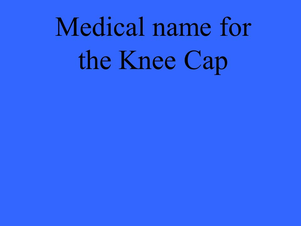 Medical name for the Knee Cap