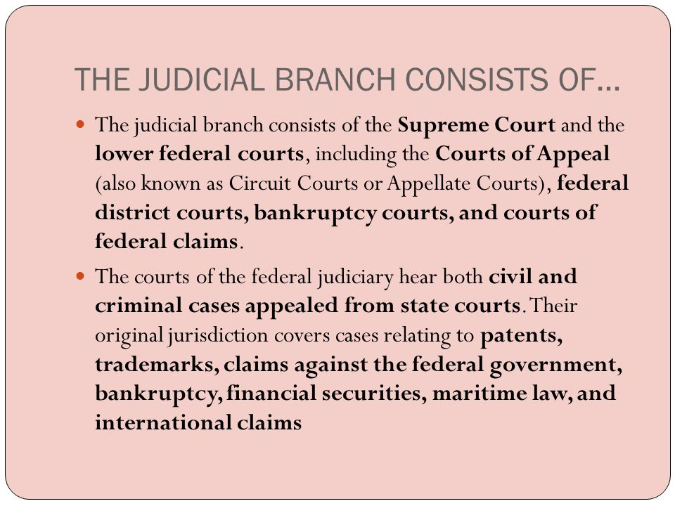 THE JUDICIAL BRANCH CONSISTS OF…
