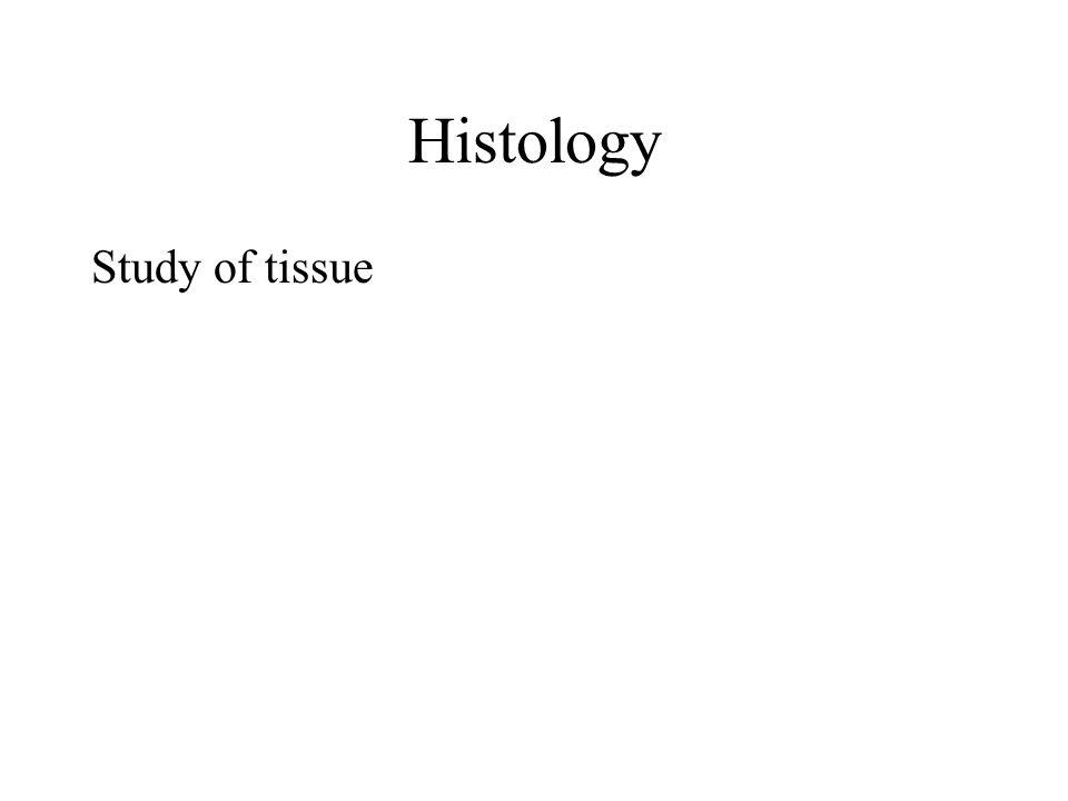 Histology Study of tissue