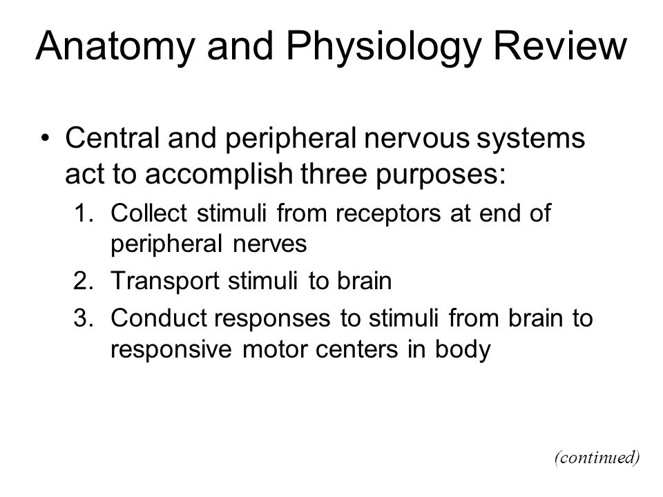 Anatomy and Physiology Review