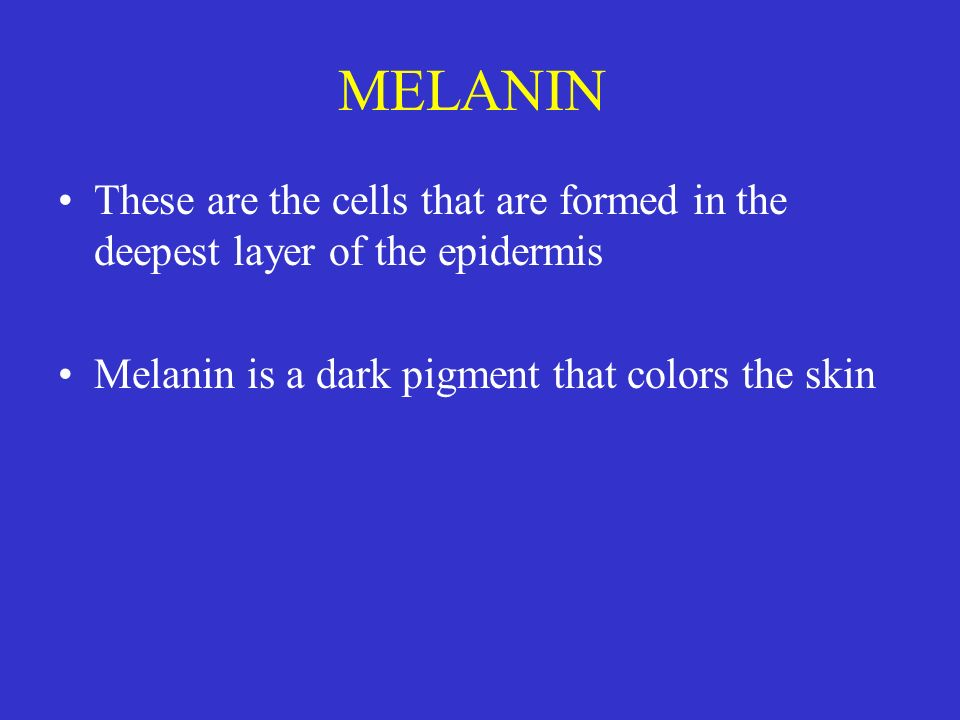 MELANIN These are the cells that are formed in the deepest layer of the epidermis.